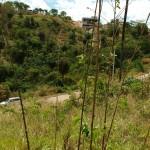 vistamontanha2